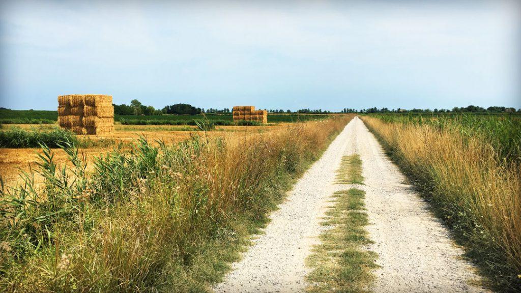 strada-e-campo
